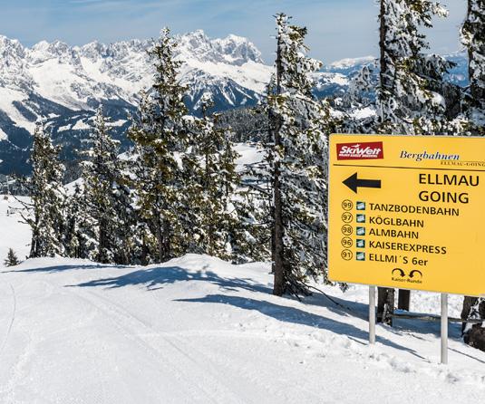 ski-guiding