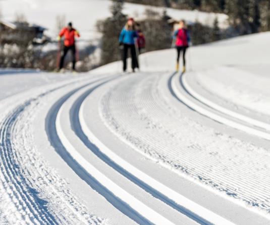 skischule-stanglwirt-langlauf-09